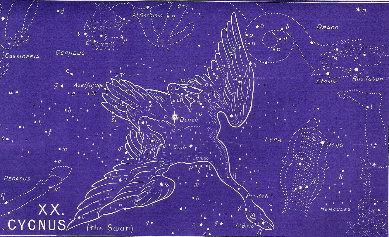 ... Pinterest | Constellations, Star constellations and Constellation map